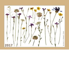 kalendar-2017