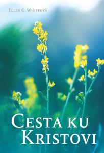 CKK nova 2019